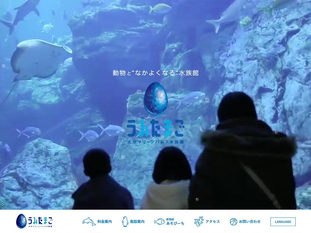 水族館「うみたまご」